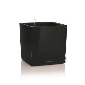 LECHUZA® CUBE 30 (16469) All-in-One Set, schwarz, hochglanz