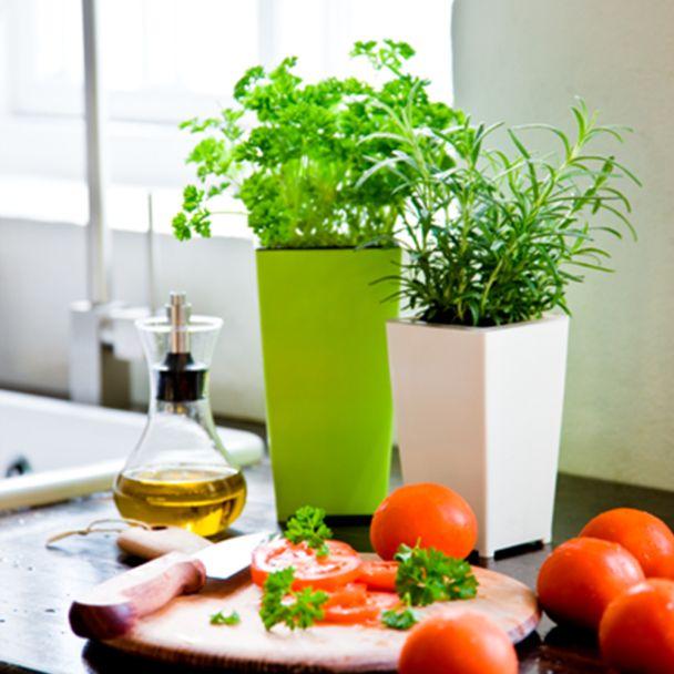 WaterFresh®, grün