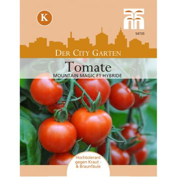 Tomate Mountain Magic F1
