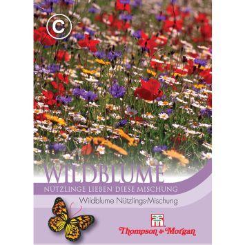Wildblume Nützlings-Mischung