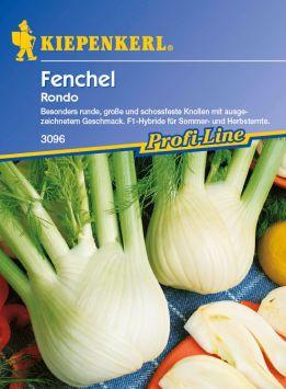 Fenchel 'Rondo' - F 1
