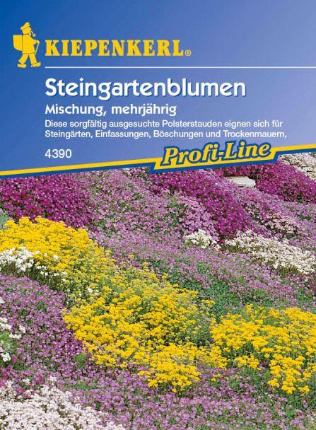 'Steingartenblumen' Mischung, mehrjährig