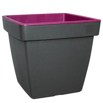 'E&K' Pflanztopf, anthrazit-purple