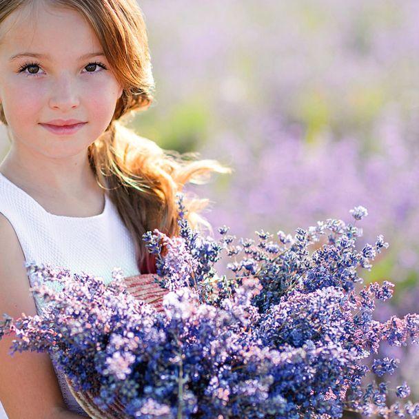 Lavendel, Essence Purple, blau