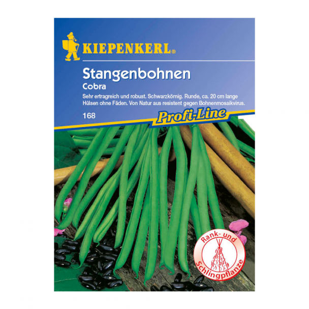 Stangenbohnen 'Cobra'