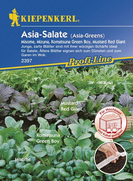 Asia-Salate 'Asia Greens' (Saatband)