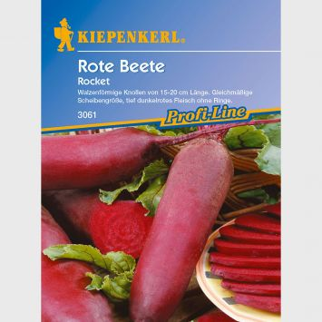 Rote Beete 'Rocket'