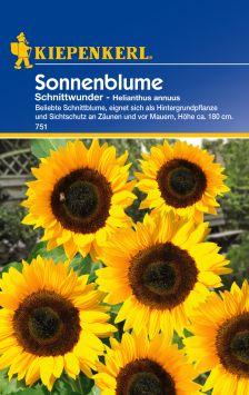 Sonnenblume 'Schnittwunder'