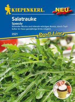 Salatrauke 'Speedy' (Saatscheiben)
