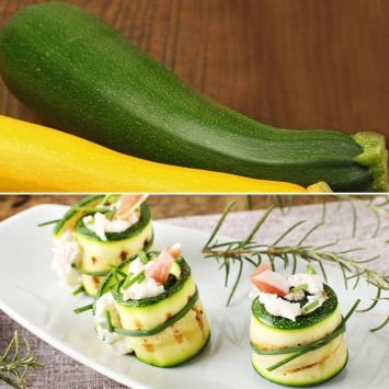 Culinari-Green F1 - Grüne Zucchini
