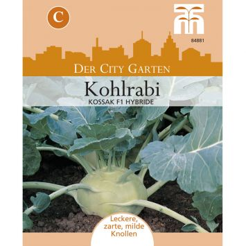 Kohlrabi Kossak