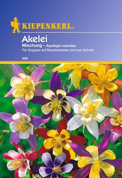 'Akelei' Mischung