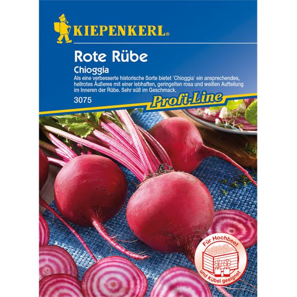 Rote Rübe 'Chioggia - improved'
