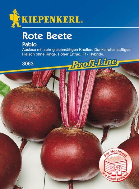 Rote Beete 'Pablo'