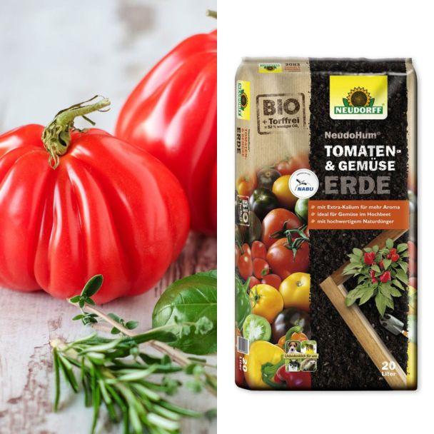 Sparangebot: 2 x 'Giganto' - die Ochsenherz-Tomate + 1 x NeudoHum® Tomaten- und Gemüseerde, 20 Liter
